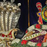 Sri Ranganatha Thiru-Nakshatram Celebrations 3/2115
