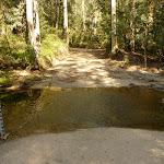 Sublime Point Trail Crossing of Leura Falls Creek (318272)