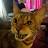 Amanda Dempster avatar image