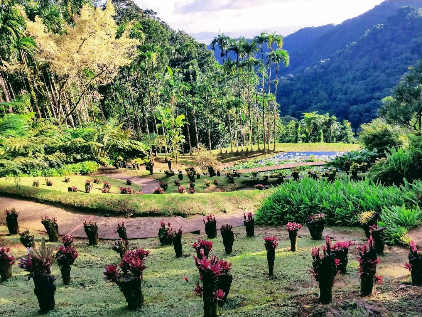 Reisinformatie Martinique