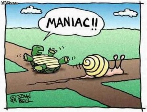 cartoon of a snail sliding past a turtle and the turtle yelling to slow down