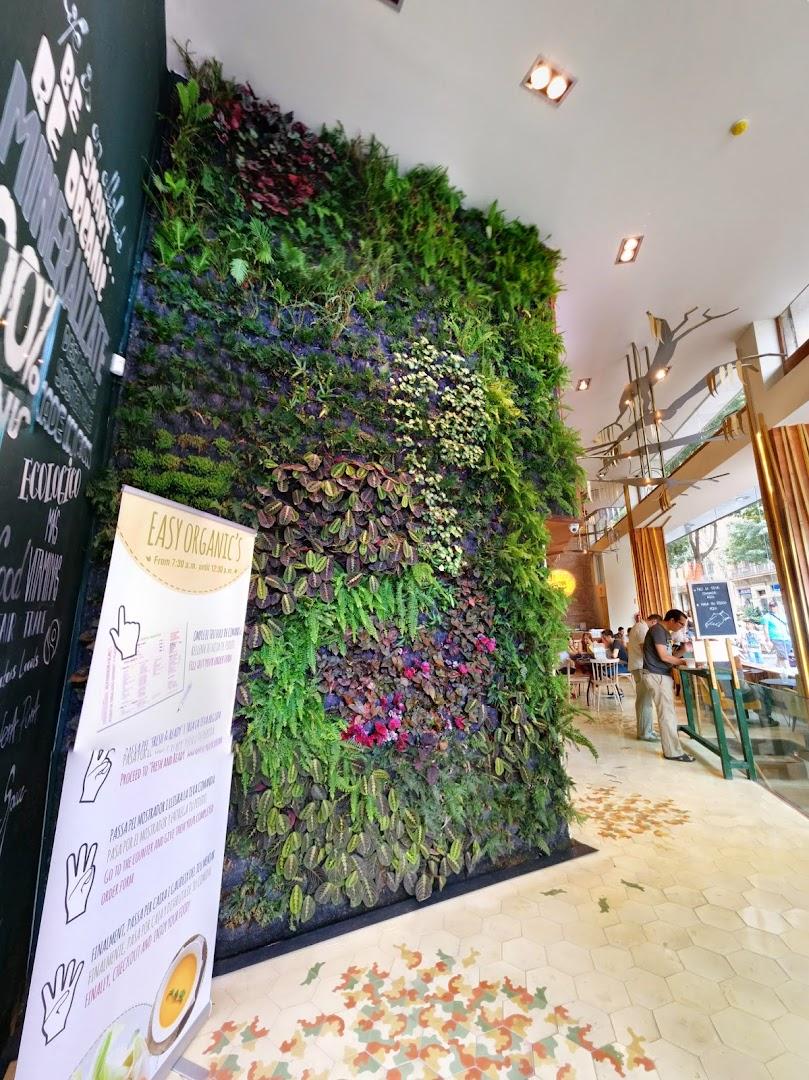Jard n vertical en barcelona restaurante organic 39 s for Proyecto jardines verticales