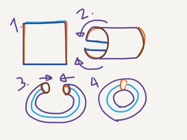 4 steps to turning a rectangle surface into a torus