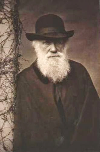 What Did Darwin Say About Religion And God