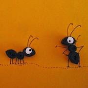сонник муравьи