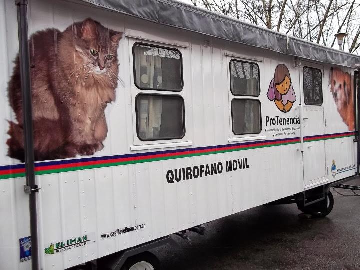 Programa de Tenencia Responsable de Mascotas en Necochea