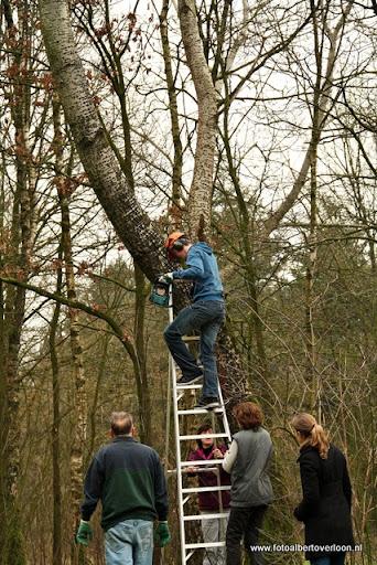 houthakkersmeewerkdag overloon 3-03-2012 (5).JPG