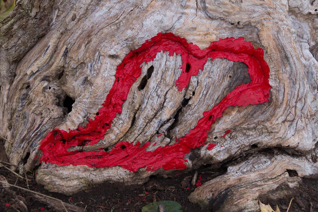 """I """"Tree Heart"""" you"""