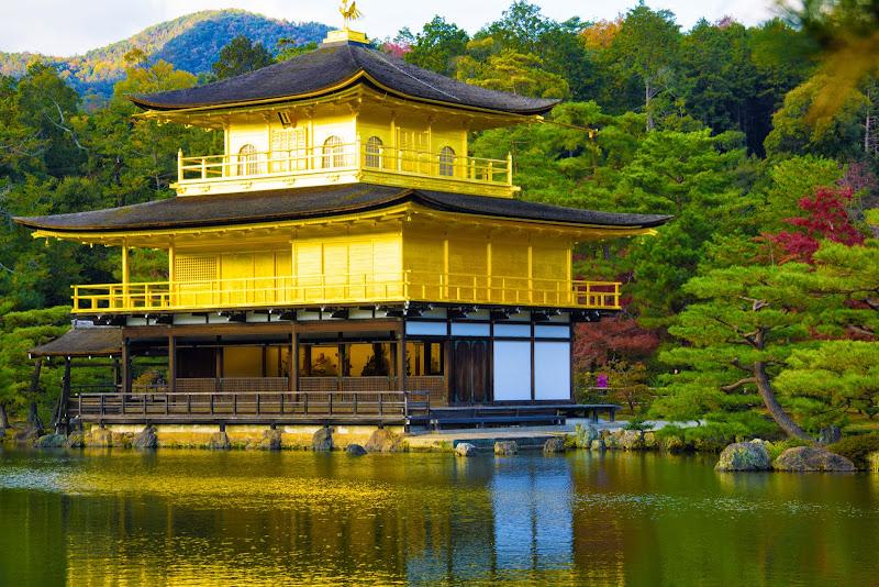 京都 紅葉 金閣寺 写真4