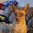 Paula Lalonde avatar image