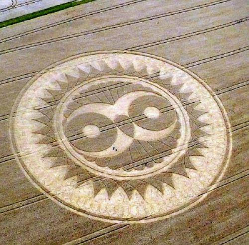 The Wise Owl Crop Circle Wiltshire Uk 2009