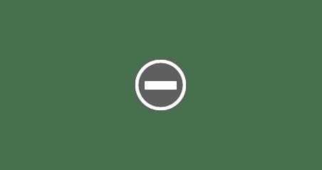Numar parlamentari romania vs franta vs germania Reducerea numărului de parlamentari
