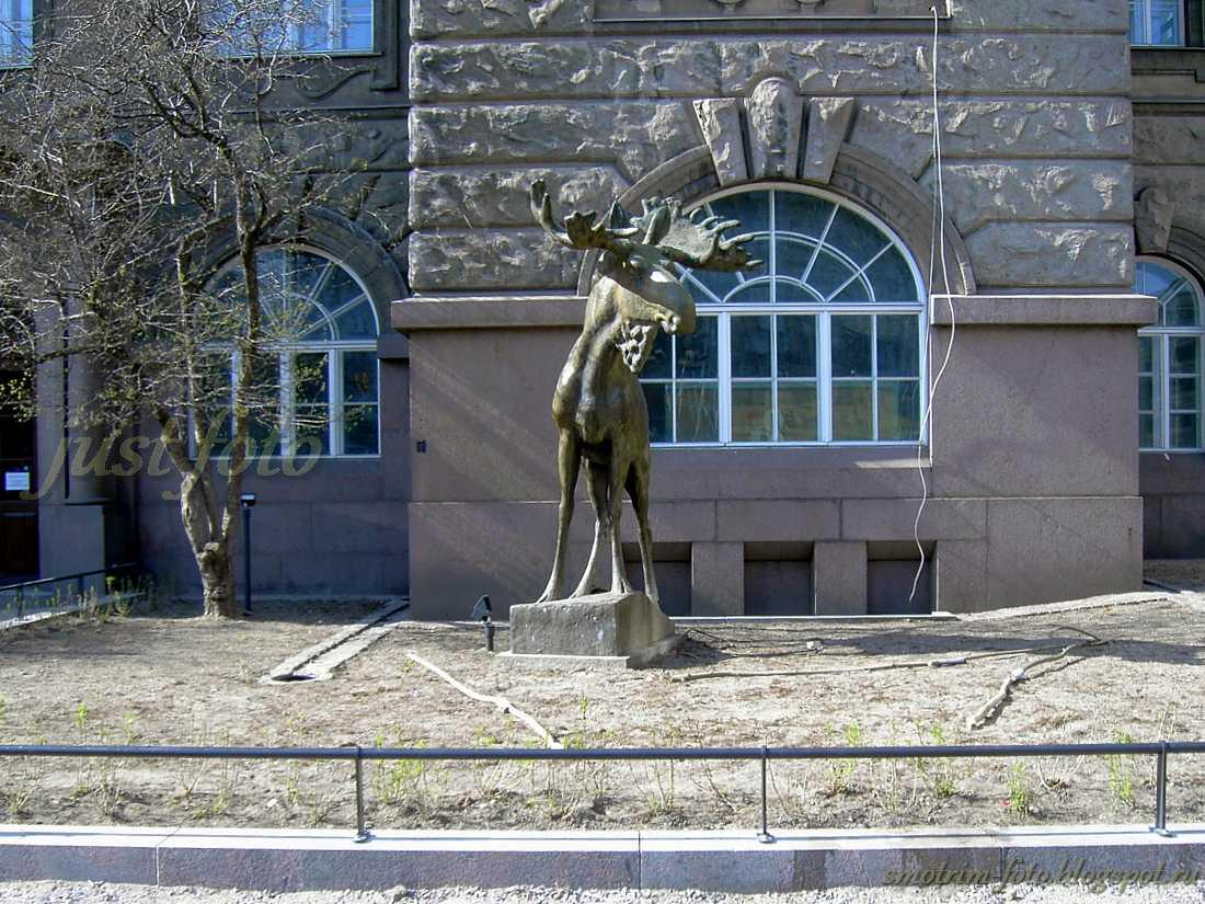 Финляндия город Хельсинки, национальный символ - лось