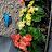 tehrima batool avatar image