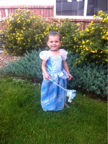 Cinderella princess costume perfect for a toddler halloween www.thebrighterwriter.blogspot.com
