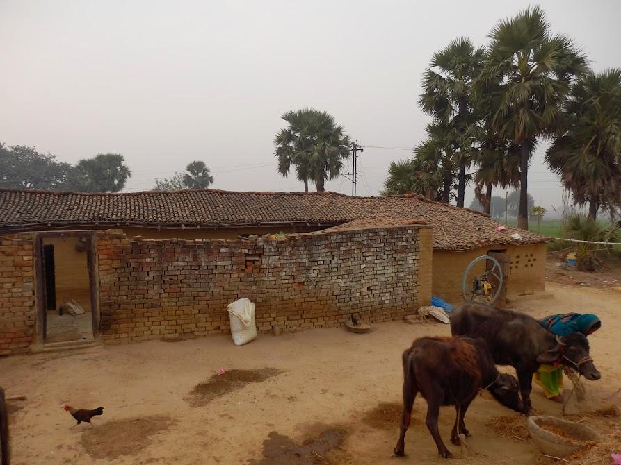 деревни в индии фото нарисуйте розы