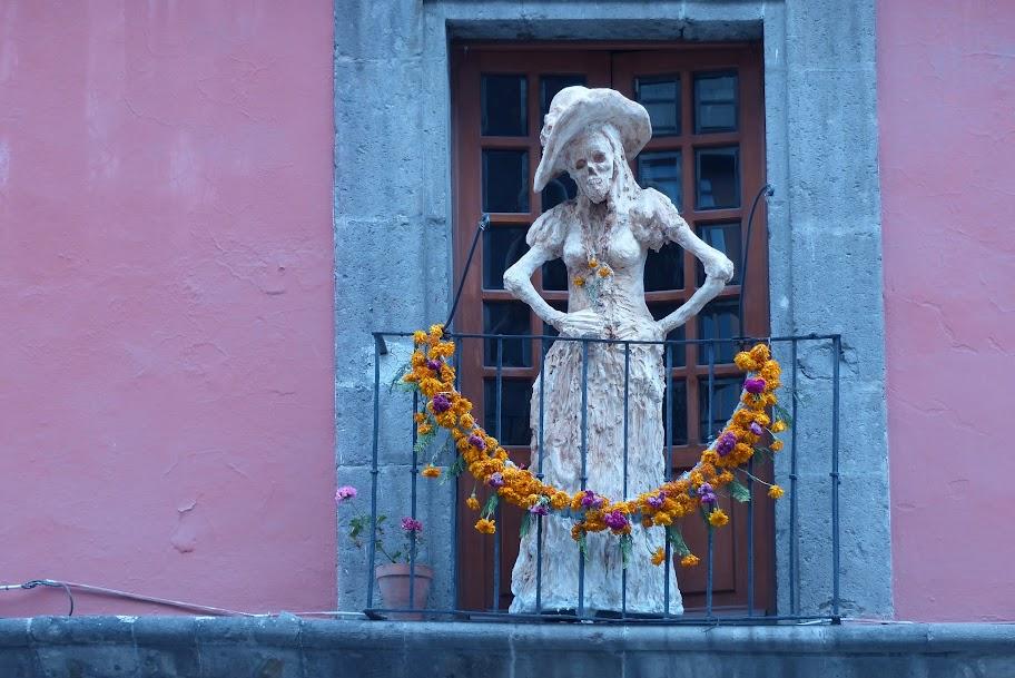Etoiles du mexique Octobre-Novembre 2012 P1000665