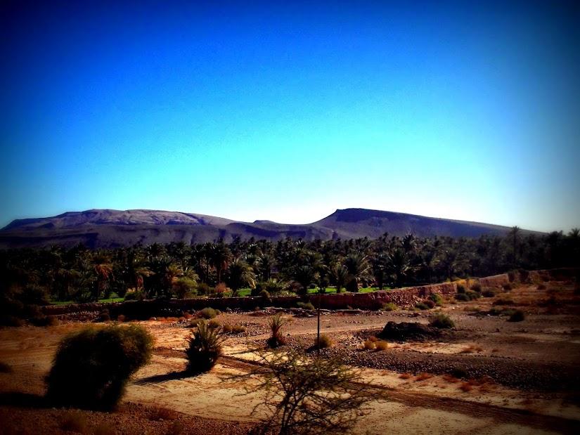 marrocos - Marrocos e Mauritãnia a Queimar Pneu e Gasolina - Página 11 DSCF1270