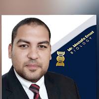 emad-mostafa674-emad