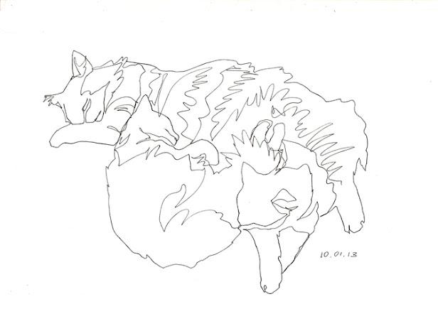 кошки одной линией