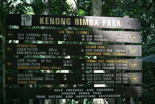 Taman-Rimba-Kenong-Rimba-Park