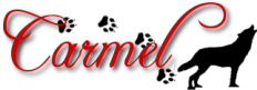Carmel Signature