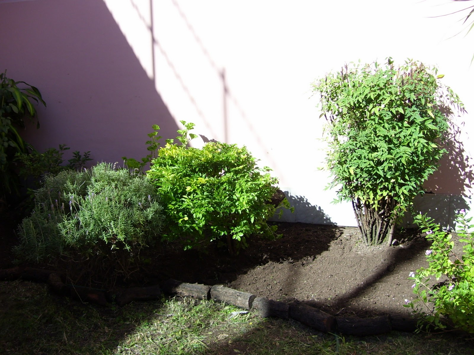 Jardineria Y Paisajismo En Gerenal Limpieza De Canteros Y