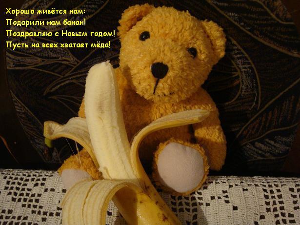 активные игрушки медведь