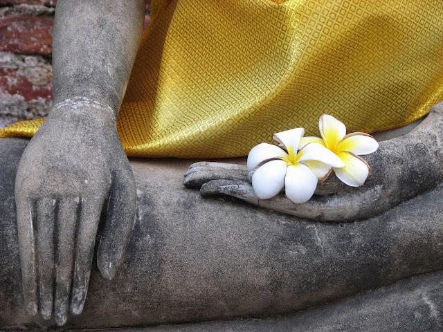 Buddha's flowers, Thailand