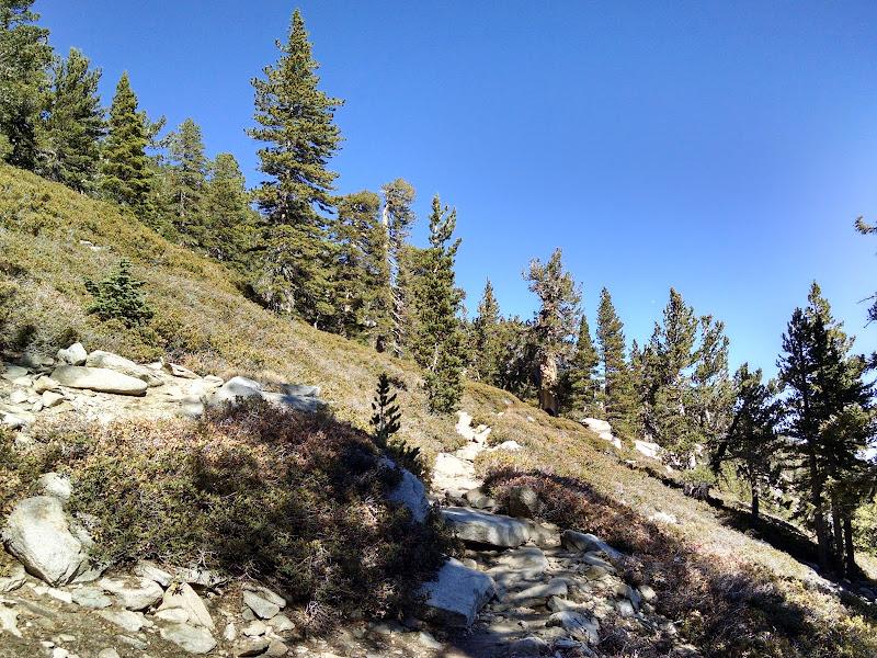 Mount San Jacinto • San Jacinto Peak Trail