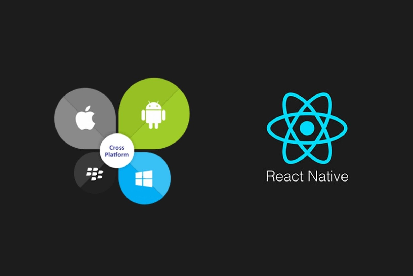React for cross-platform mobile apps