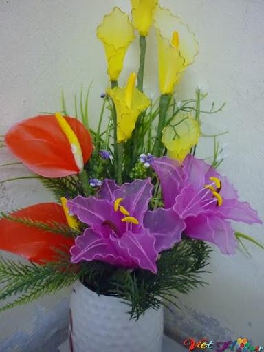 mau hoa lily bang vải voan