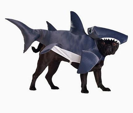 Shark Dog Costume top 10 halloween pet costumes