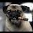 Peter Atki avatar image