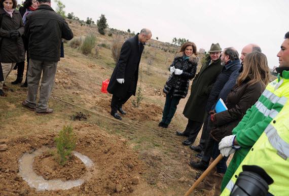 3.500 árboles plantados por ciudadanos en el nuevo parque de Valdebebas