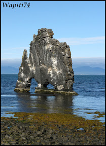 Un tour  d'Islande, au pays du feu... et des eaux. 23-Hvitserkur
