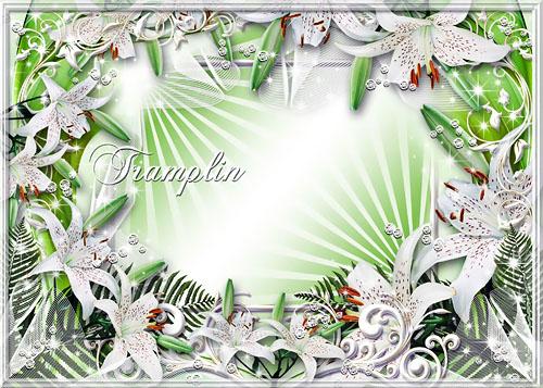 Рамка для Photoshop  – Белые лилии в алмазах