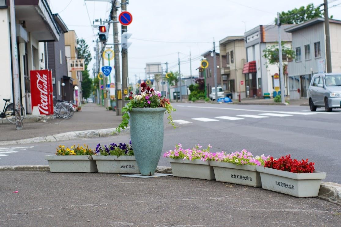 町内を飾る花達
