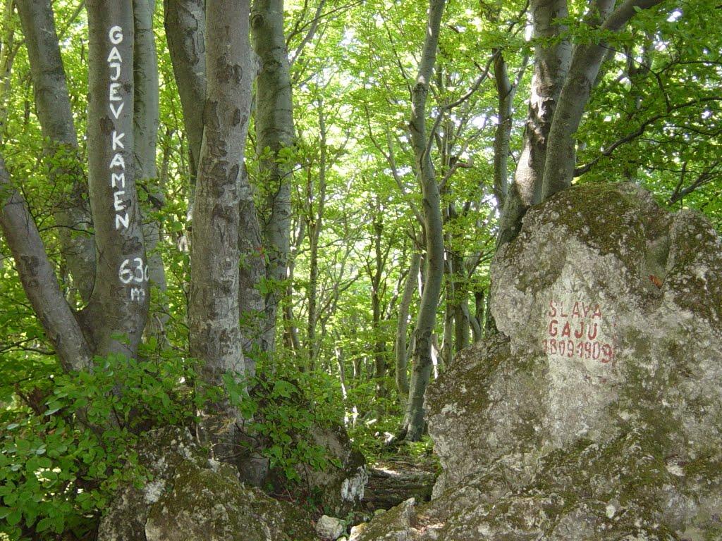 Gajev kamen