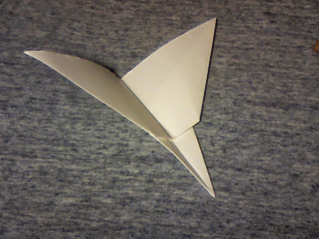 Wing 24