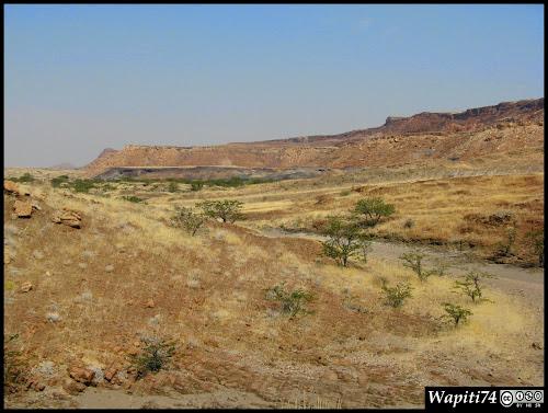 Balade australe... 11 jours en Namibie IMG_0589