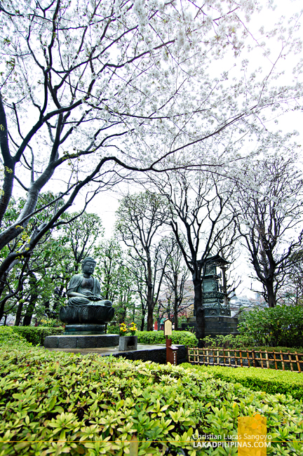 A Japanese Garden at Asakusa's Sensoji Temple
