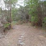 Light to Light walk on Mowarry Point (104668)