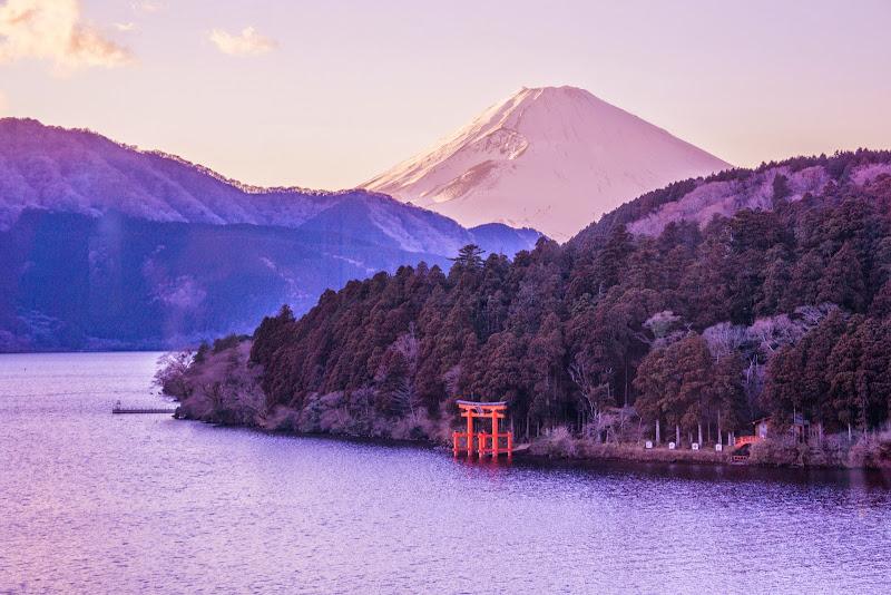 箱根 成川美術館 写真10