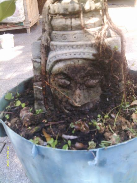 Angkor Wat... - Página 4 IMAG0047
