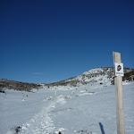 Rock Creek snowshoe pole line (299788)
