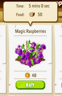 Magic Raspberries
