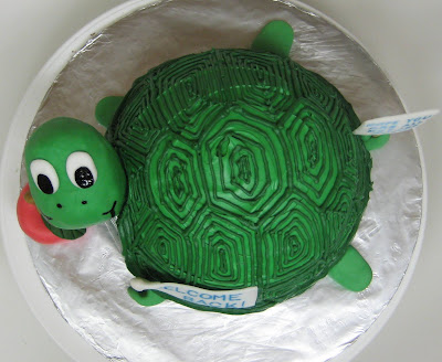 3D Turtle Cake - Overhead View
