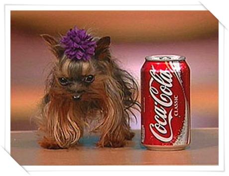 videos de coca cola: