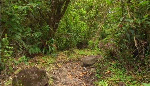 Parque Nacional Vulcão Arenal